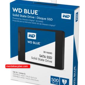 WD Blue SSD 3D Nand 500GB Sata 3 #1